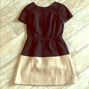 BCBG Max Azria Colorblock Dress Size 8